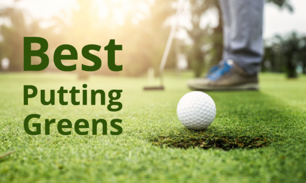 The 10 Best Putting Greens To Buy in 2021