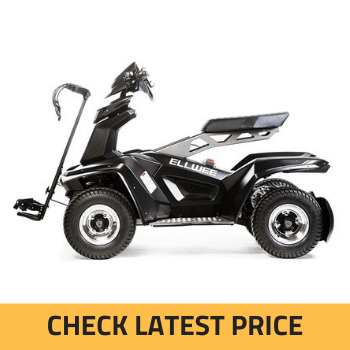 Ellwee Electric Golf Cart Review