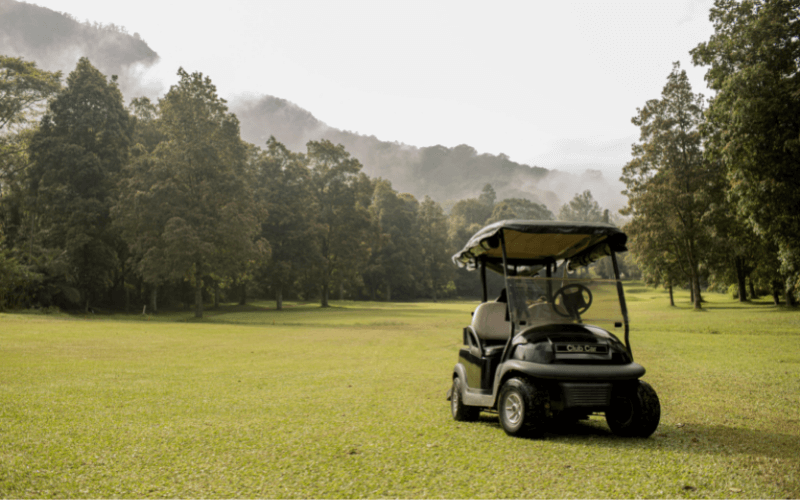 9 Best Electric Golf Carts To Buy In 2021