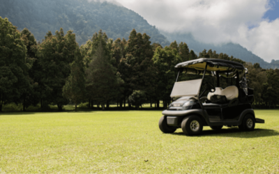 10 Best Golf Cart Reviews: Which One is Ideal for You?